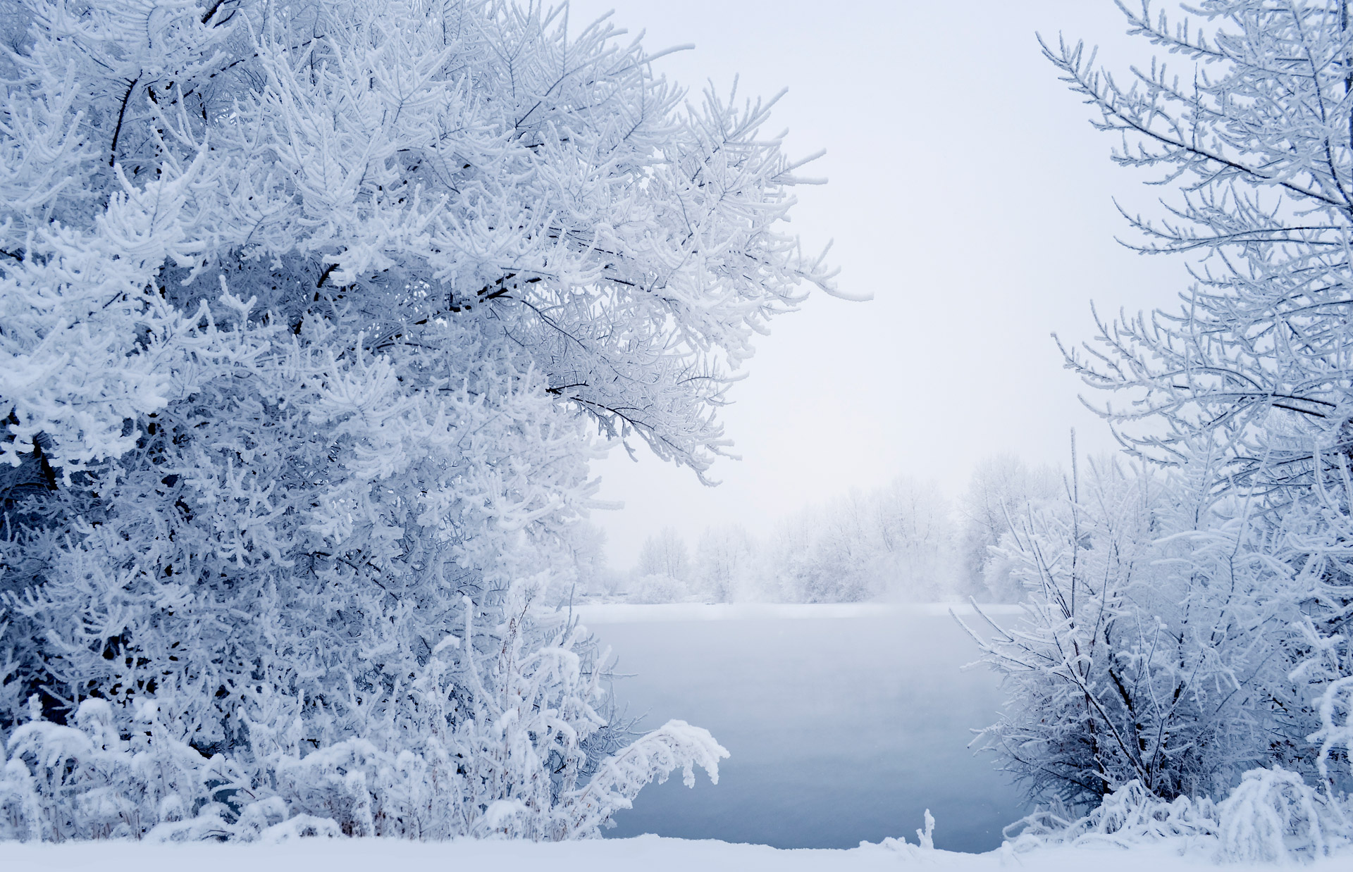 winter-pd